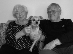 Lydia and Paul Stevens, along with their dog, Eddy, appreciate the care HSPPR provides animals and their community and are supporting the Humane Society with a gift in their estate plan.